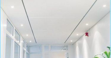 ¿Cuáles son los paneles de techo