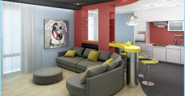 Opciones para la Zonificación sala de estar y cocina