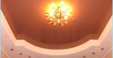 Diseño de techo en la sala con fotos