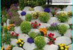 Trabajar en el jardín, en el mes de marzo: cómo cuidar de su jardín?